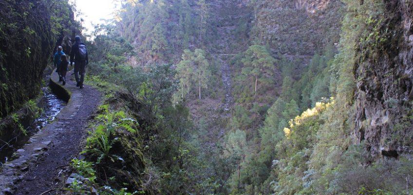 Les randos de La Palma